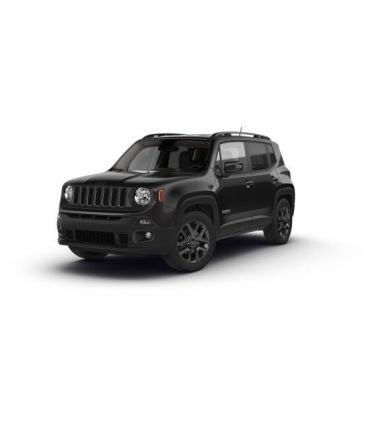 Jeep Renegade 5p(railing) (2014--)
